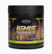 Dominus Nutrition IGNIS™ rasvan mobilisointiin, 100g